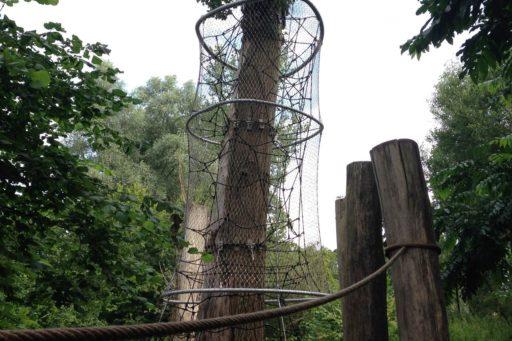 boomkroontoren-amsterdam-netten-rondom-boom2
