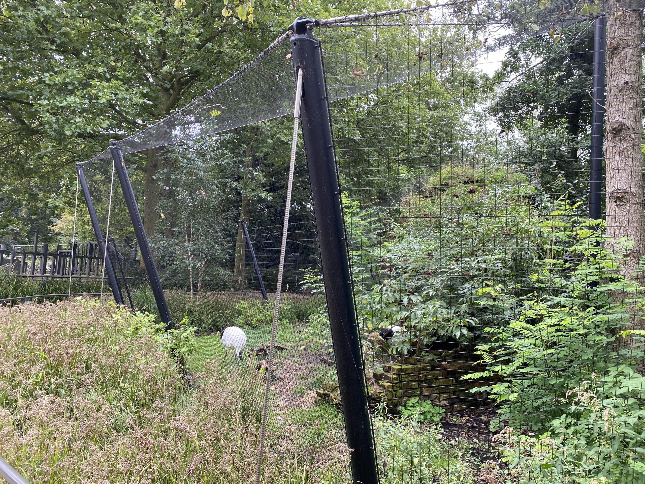 RVS kabels Artis Kraanvogelverblijf - Carl Stahl